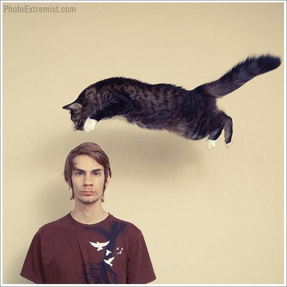 Harry Hilders - Vliegende kat