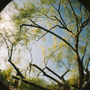 Fisheye-objectief - Flickr