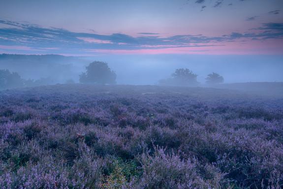 Landschapfotografie