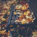 herfst-fotografie