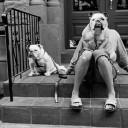 straat-fotografie