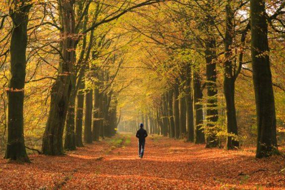 5x Tips voor natuurfotografie